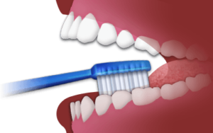 Brushing & Flossing